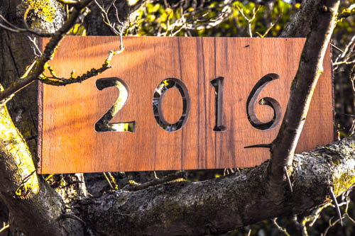 Neujahrsfoto 2016